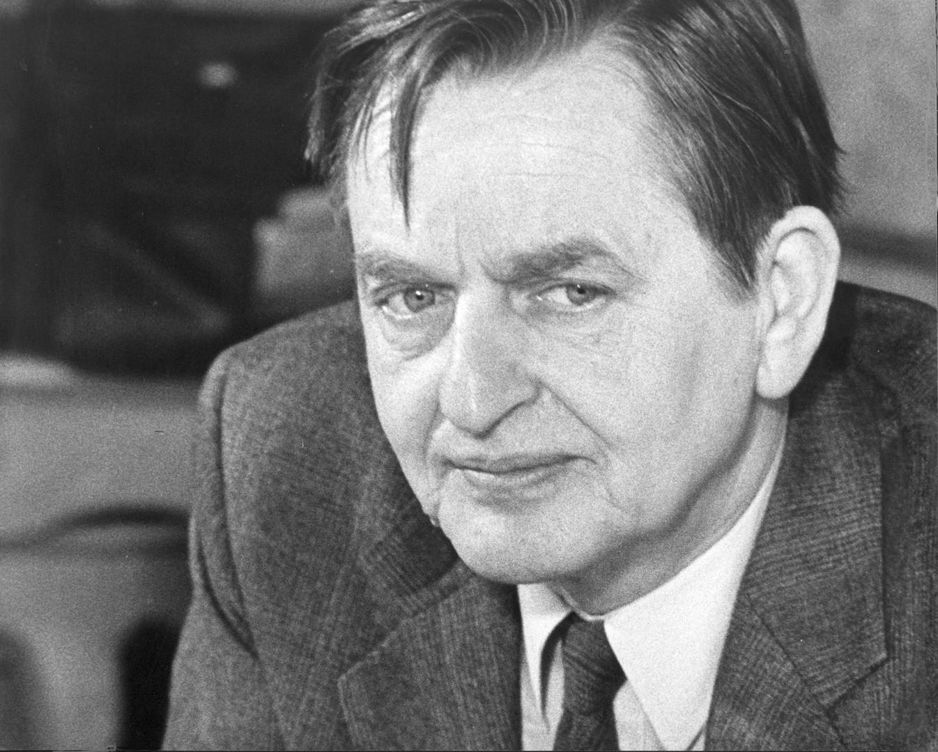 Olof Palme, Socialdemokrat och sexköpare.