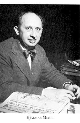 Hjalmar Mehr, sexköpare