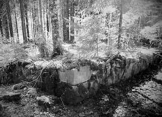 Abbortjärn_edited.jpg