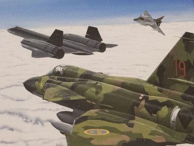 Tavla från Blackbird-incidenten 1986