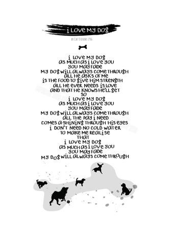 Cat Stevens: I Love My Dog - Lyrics