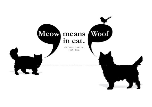 Meow means woof in cat.