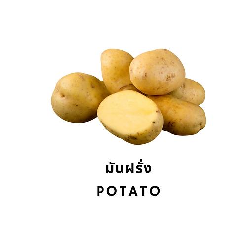 Potato 500G มันฝรั่ง 