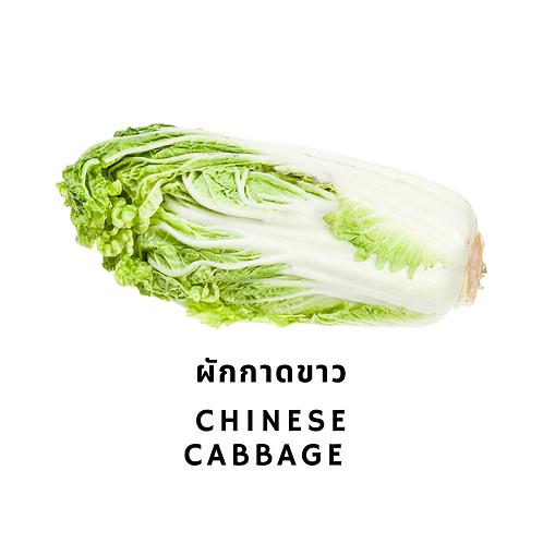 ผักกาดขาว 250G Chinese Cabbage