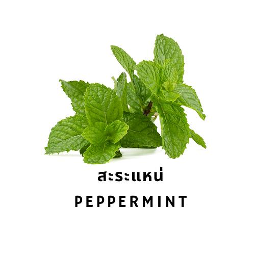 สะระแหน่ 50G Peppermint