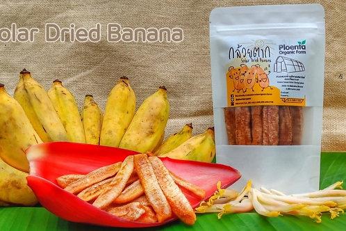 กล้วยตาก Dried Banana