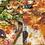 Thumbnail: Bacon Cheese Pizza / CONKEY'S