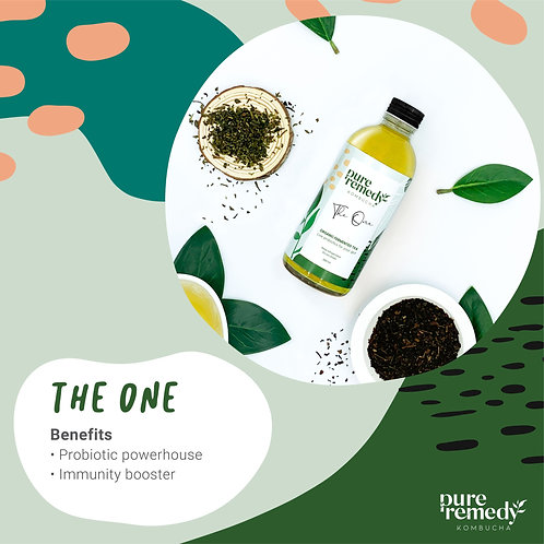 The One Kombucha 260ML /Pure Remedy คอมบูชา