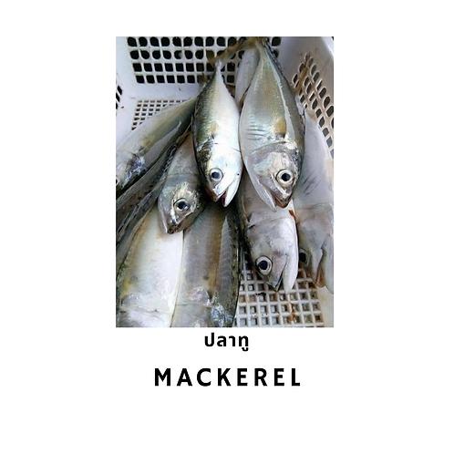 Mackerel 1 kg ปลาทู