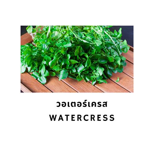 วอเตอร์เครส 200G Watercress