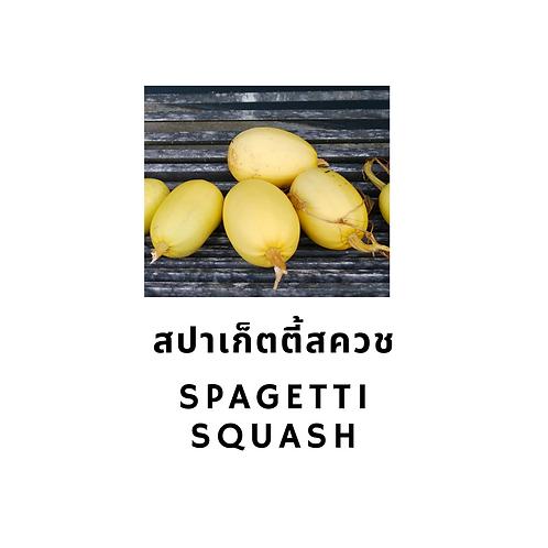 Spagetti Squash 600G สปาเก็ตตี้สควช 1 ลูก