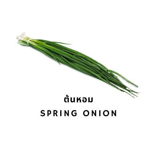 Spring Onion 100G ต้นหอม