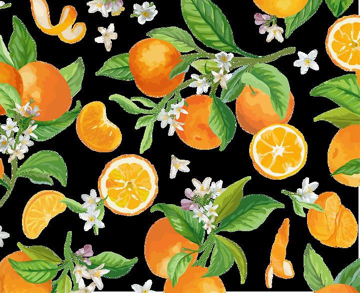 transparent mandarin backgorudn.png