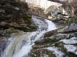 Bush's 46, waterfall 3-10 (25)