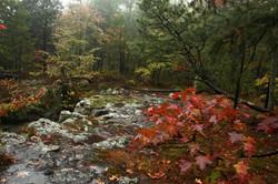 Atop Cecil Hollow Falls October Rain_0085