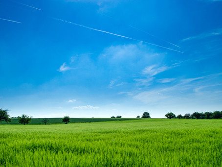Closing Sales For Landowners: 3 Tips To Consider