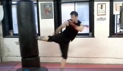 Roundhouse kick