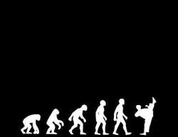 Muay Thai Evolution