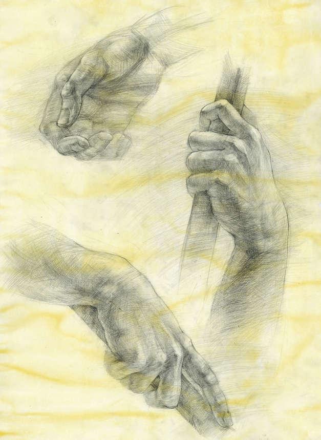 Anatomy Study - Hands - 9 hrs