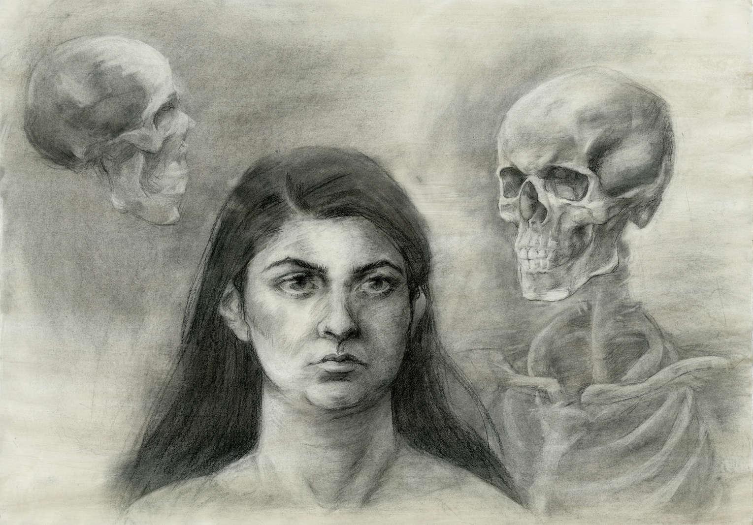 Anatomy Study - Head and Neck