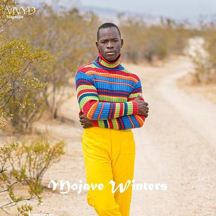 Vivyd Magazine November 2019