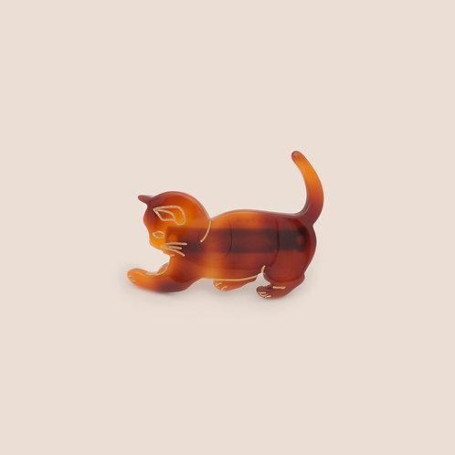 Chat -  Petit modèle