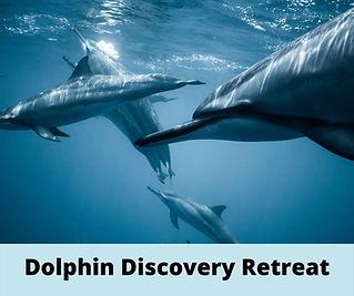 Dolphinretreat.jpg