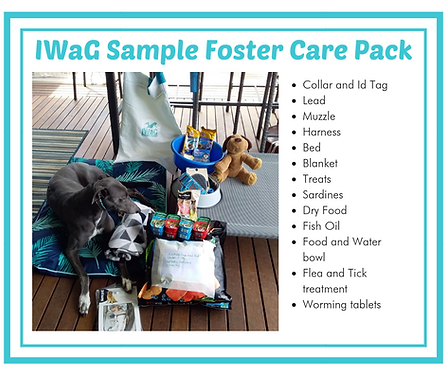 sample foster care pack.png