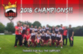 champions poster.jpg