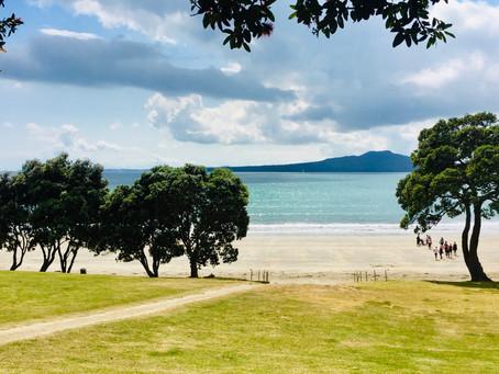 'THE' taste of New Zealand