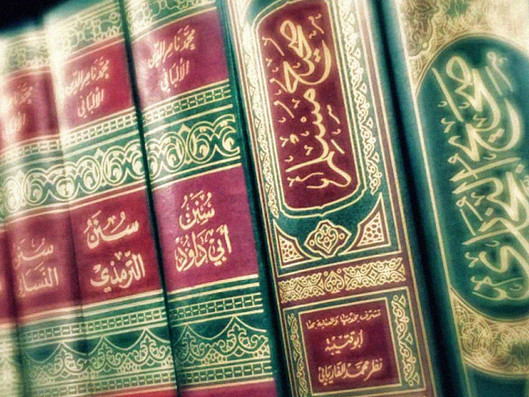 Differences of Opinion in Sunni Schools of Thought