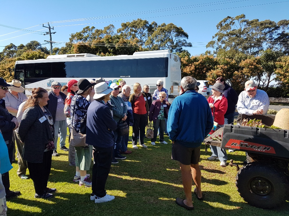 National-Seniors-Redcliffe-Coffee talk