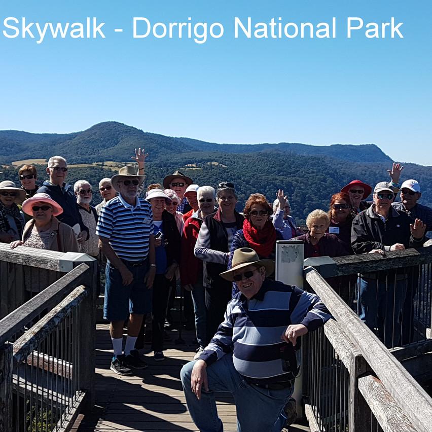 National-Seniors-Redcliffe-Skywalk Dorrigo