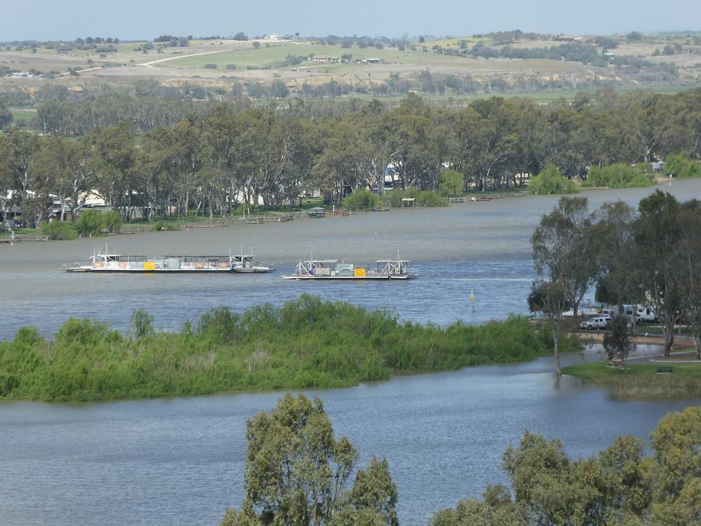 Cross river ferries at Mannum