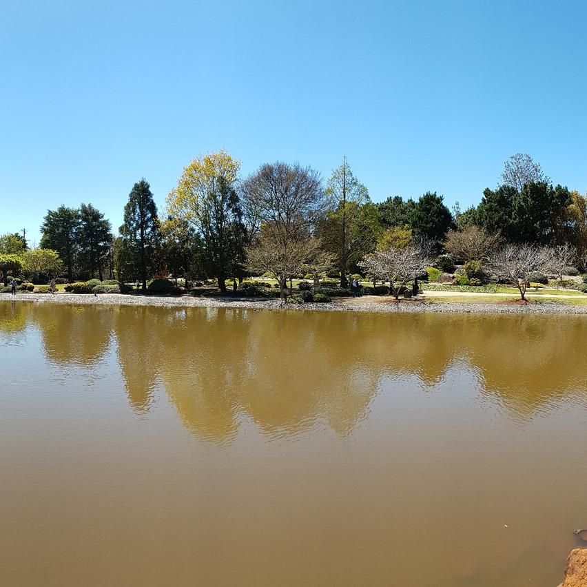 National-Seniors-Redcliffe-Lake view Japanese Garden