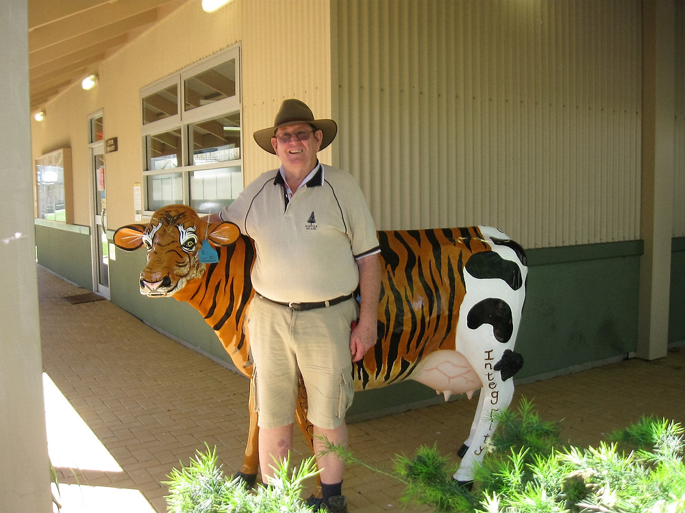 Mick hugging the cow/tiger at Mypolonga School