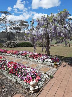 National-Seniors-Redcliffe-Second Garden