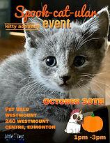 WESTMOUNT OCTOBER ADOPTION EVENT