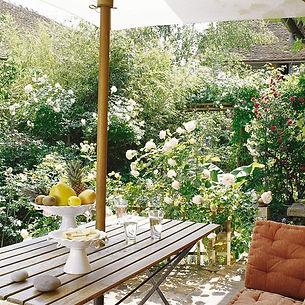 une-terrasse-vegetalisee-pour-dejeuner-d