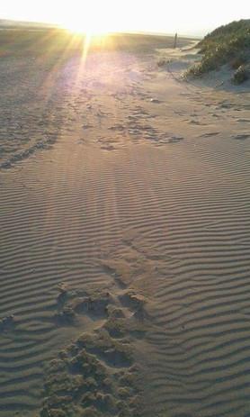 Burnham Beach
