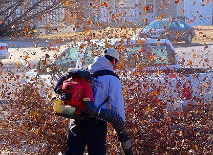 Ban Leaf Blowers Saanich