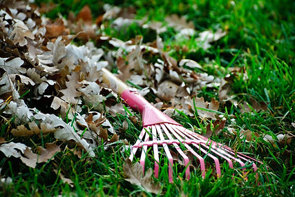 Put down you leaf blower and pick up a rake