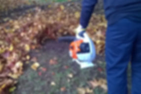 Leaf blowers pollute