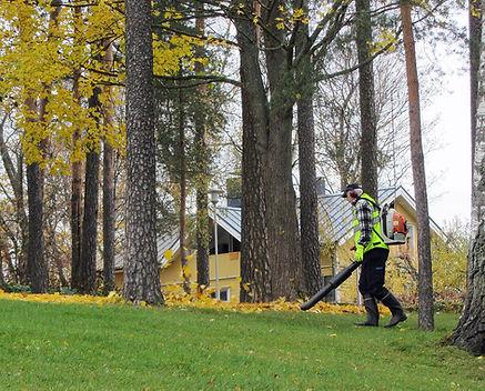 Leaf blowers create harmful noise pollution