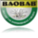 baobab-inclusive-empowerment-society-squ