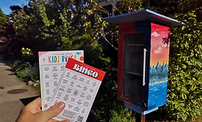 little-free-library-bingo-game.webp