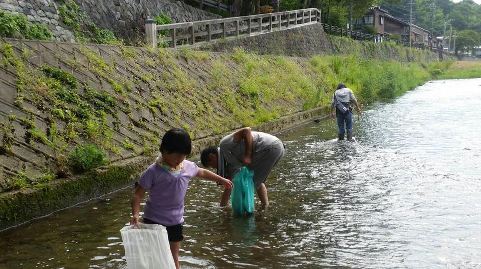 川清掃&生き物観察