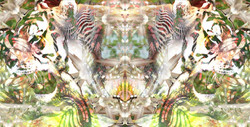 Separating Symmetry