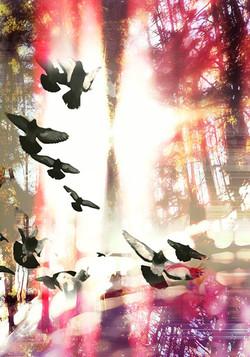 Spirit Flight