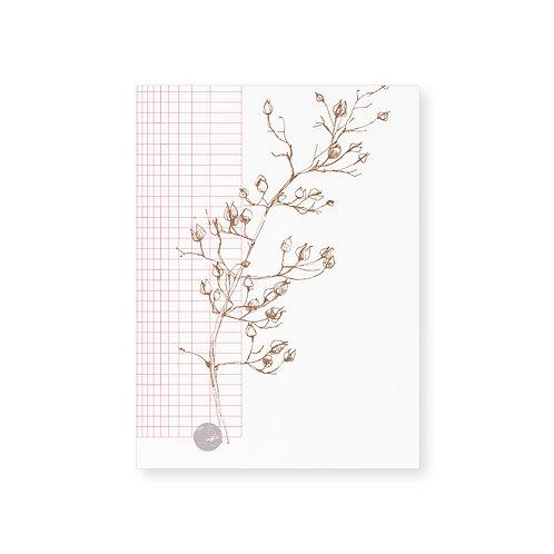 Card (5pcs) / Spring grid